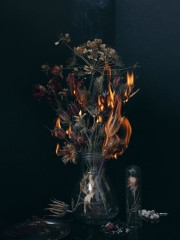 Vanity fire part 2